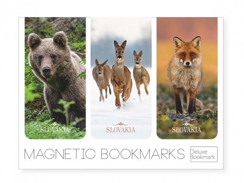 Medveď, srnky, líška